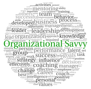 Organizational Savvy and related terms